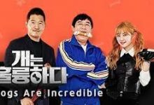 Photo of Dogs are Incredible Episode 96 English Sub